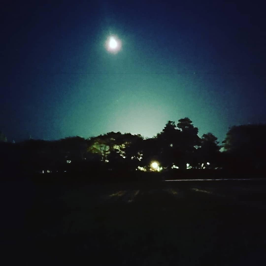 林の上にはお月さま